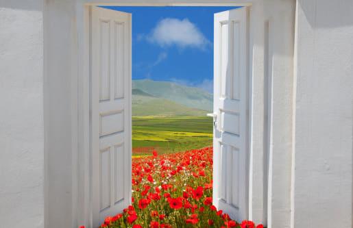 door opening onto poppies & Gateway Drugs | Geek Girl in Love