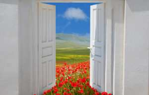 door opening onto poppies