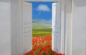 door opening onto poppies