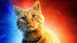 captain-marvel-cat-goose.jpg
